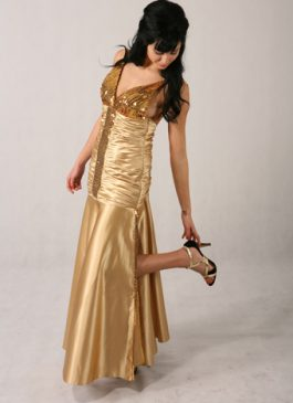 Evening gown collection 2011