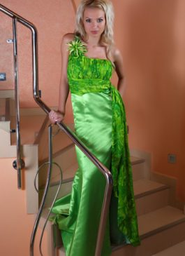 Evening gown 535