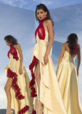 Evening gown 2519